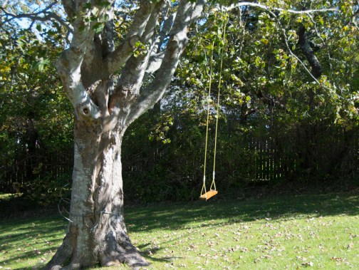 An old fashioned swing
