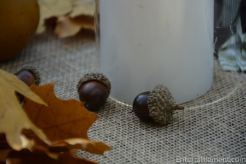 lovely little acorns