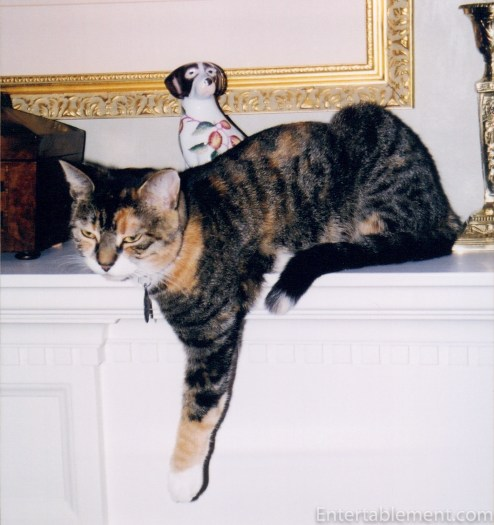 Jenny drooping from the mantlepiece