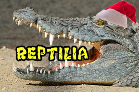 59-off-general-admission-to-reptilia-798572-regular