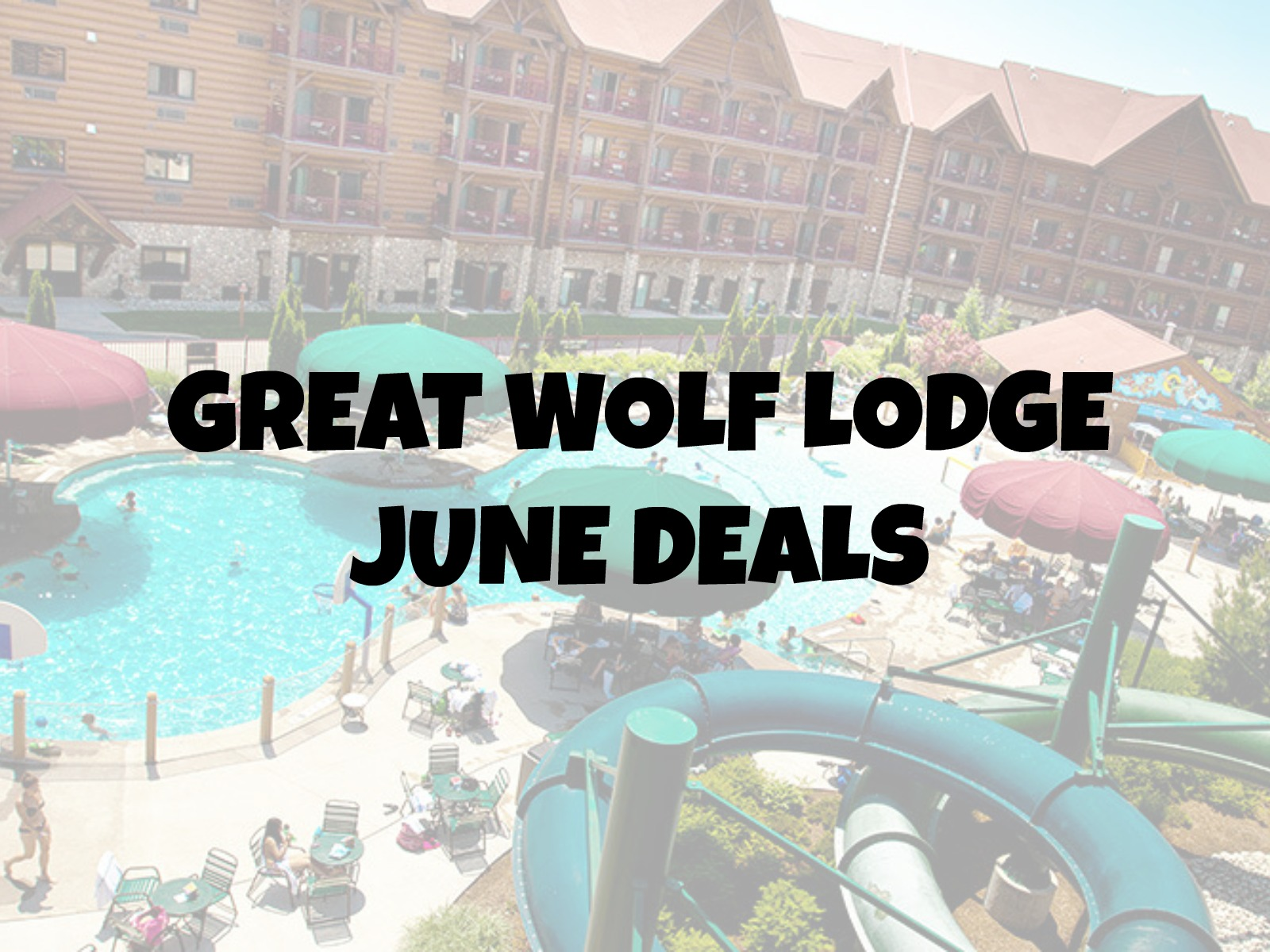June Great Wolf Lodge Deals