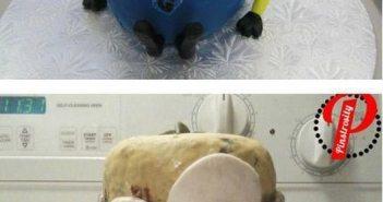 6-hilarious-pinterest-fails-funny-photos4
