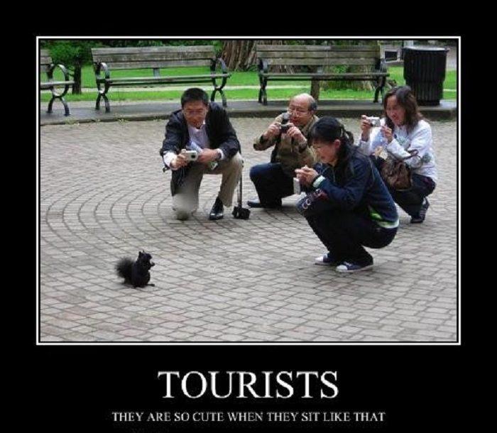 19-hilarious-tourist-photo-fails