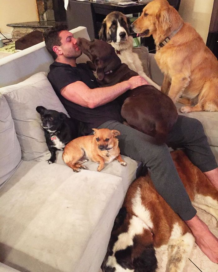 guy-keeps-rescuing-pets-1