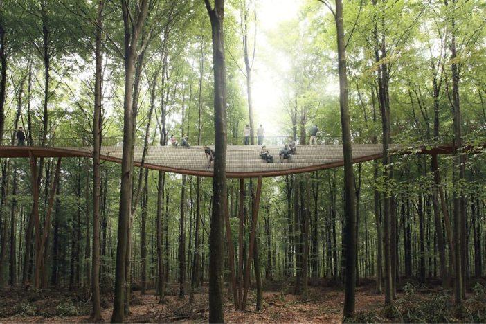 spiraling-treetop-8