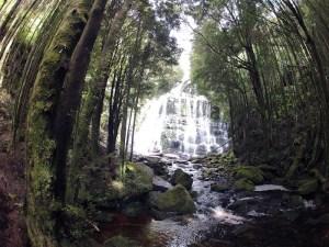 nelson-falls-tasmanie