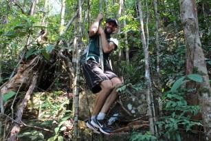 Tarzan est de retour