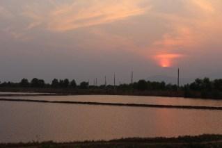 Coucher de soleil sur les marais.