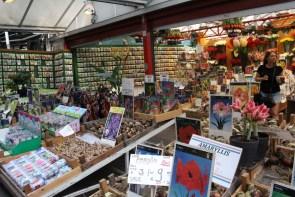 """Le marché aux """"bulbes"""""""