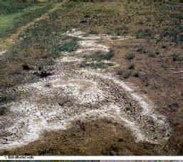 Degradation of rangeland resources