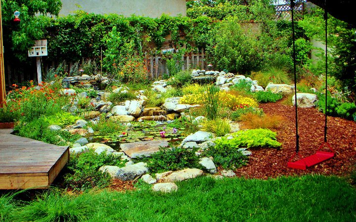 California Drought Tolerant Garden Manhattan Beach, Enviroscape - drought tolerant garden designs