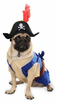 Pirate Pup Dog Costume