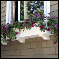 Window Boxes, Window Planters- Extraordinary Selection in ...
