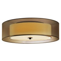 Low voltage ceiling fan wiring color, shallow flush mount ...