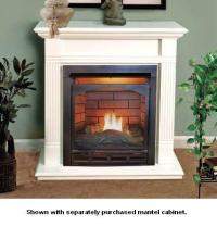 Gas Fireplaces - Free Shipping - eFireplaceStore.com