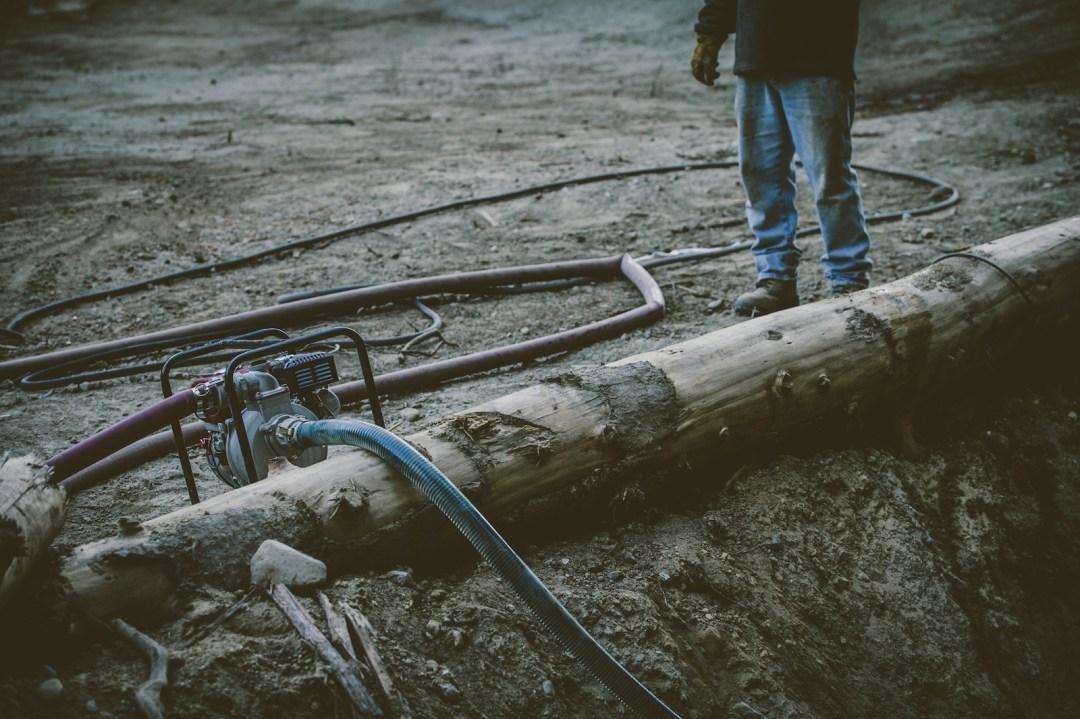 Logan Peat