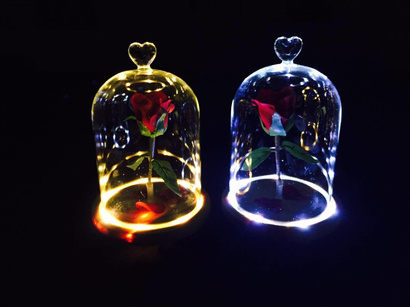 Glass Night Lights The Beauty And The Beast Enchanted Flower Rose Belle Glass