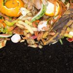 29949191 - compost with composted soil