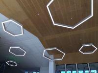 Lighting Lab - Hexagonal Linear LED Pendant Light - EQLight