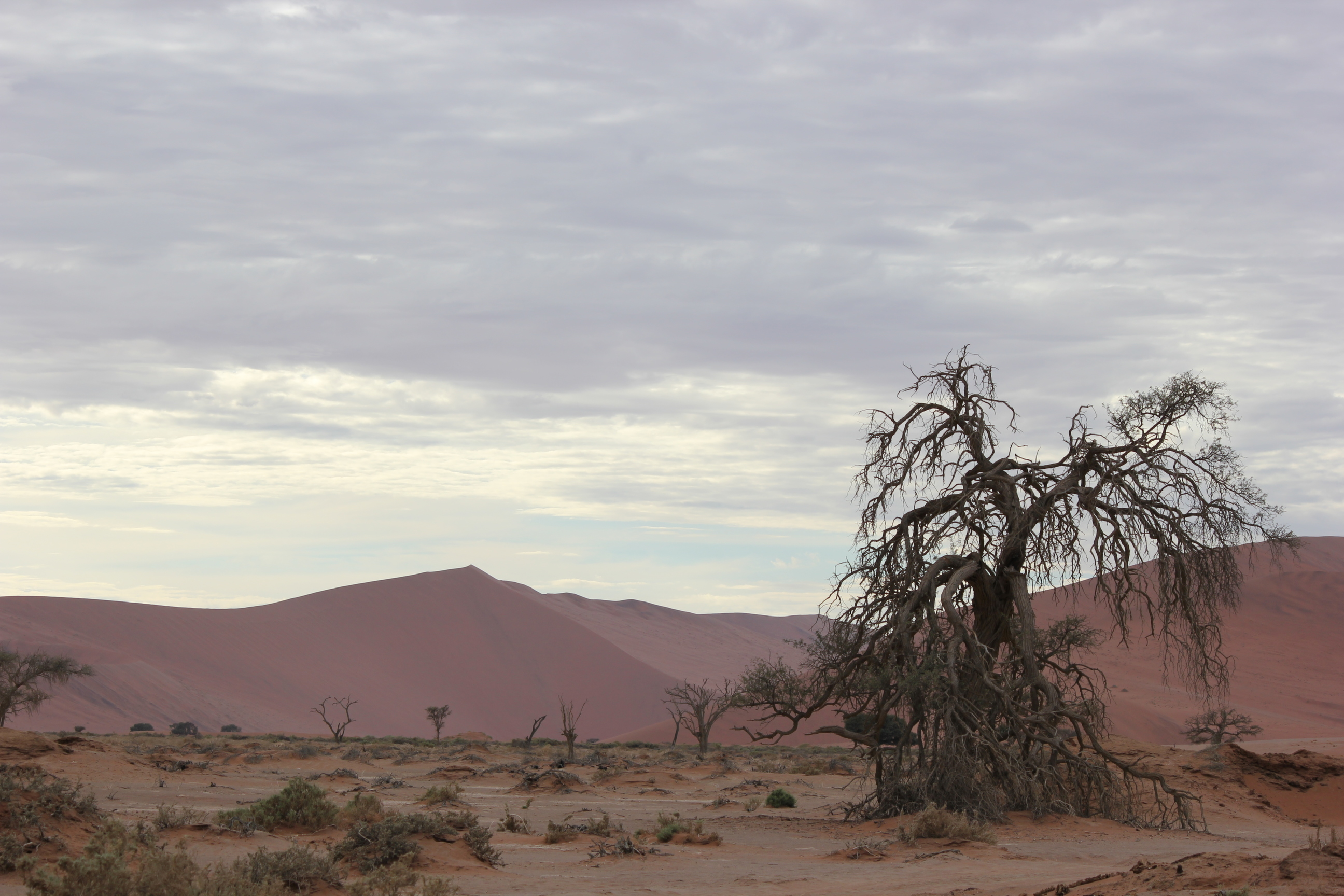 Namibia The Narnia Of South West Africa Equatours Travel News