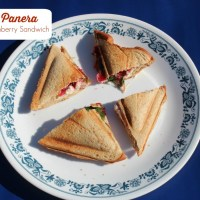 Copycat Panera Turkey Cranberry Sandwich