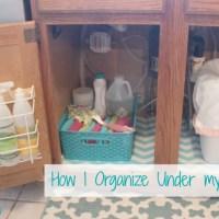 How I Organize Under my Sink