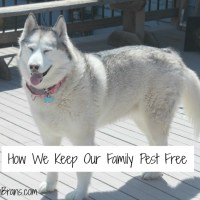 How We Keep Our Family Pest Free