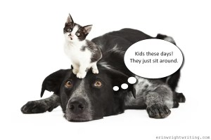 Kitten sitting on adult dog introduces post on when to capitalize baby boomer, Generation Xer, and millennial