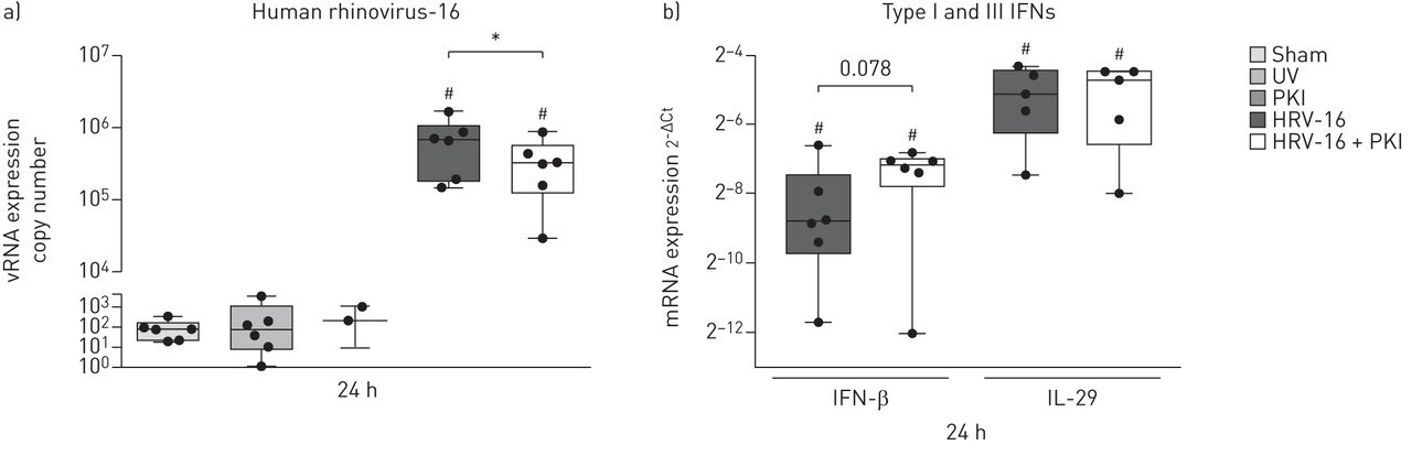 Inhibition of Pim1 kinase, new therapeutic approach in virus-induced