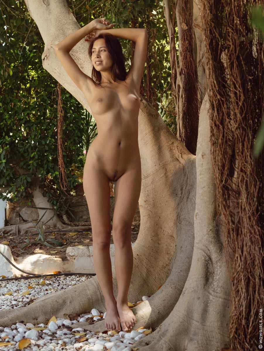 Paula Shy Strips Under a Big Tree
