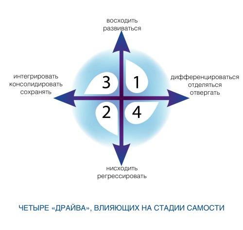 Рис. 2. Четыре «драйва», влияющие на стадии самости