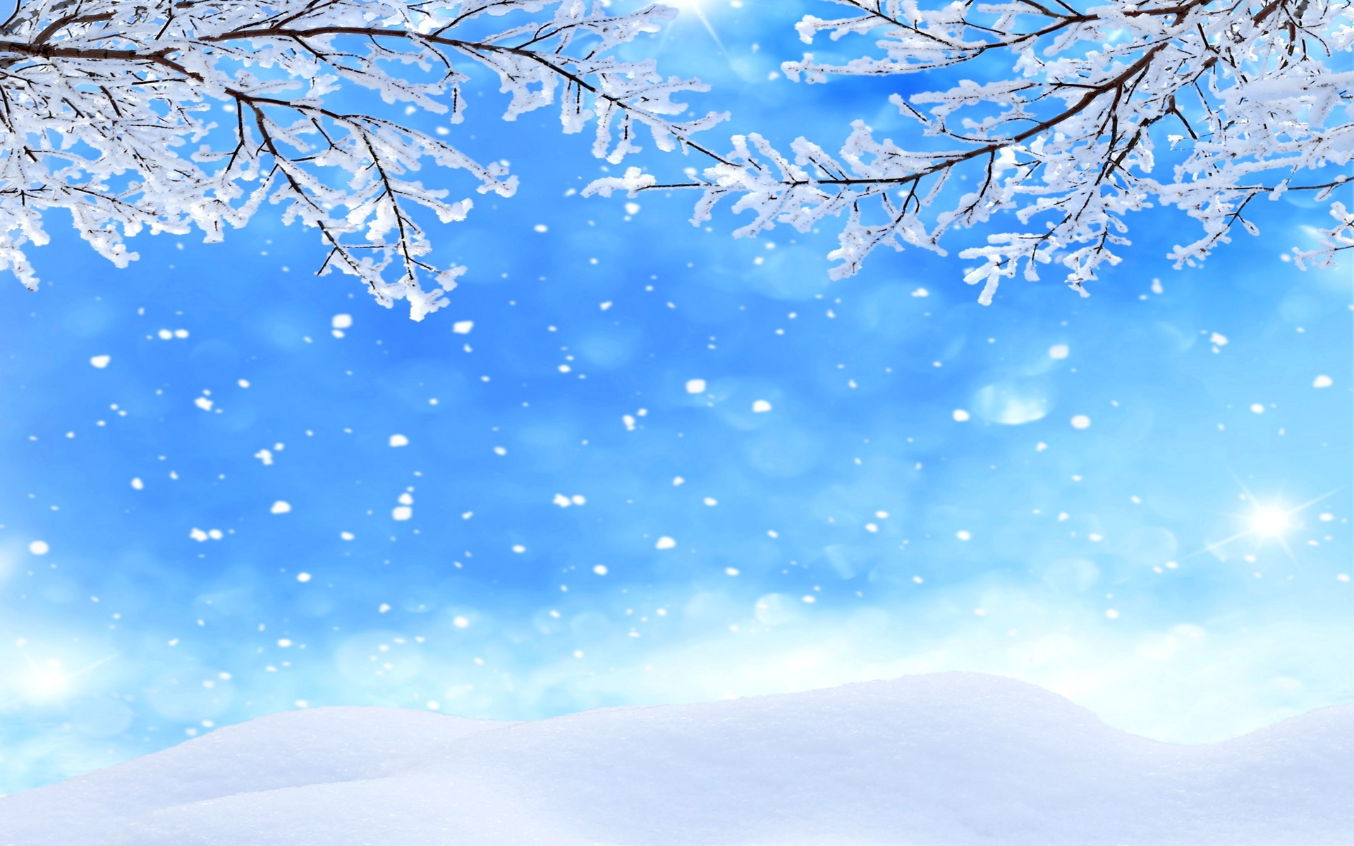 Iphone 5s Wallpapers Full Hd Fondos De Pantalla Invierno Ramitas Nieve Copos De