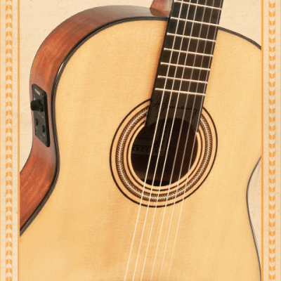 guitar-maestro-closeup