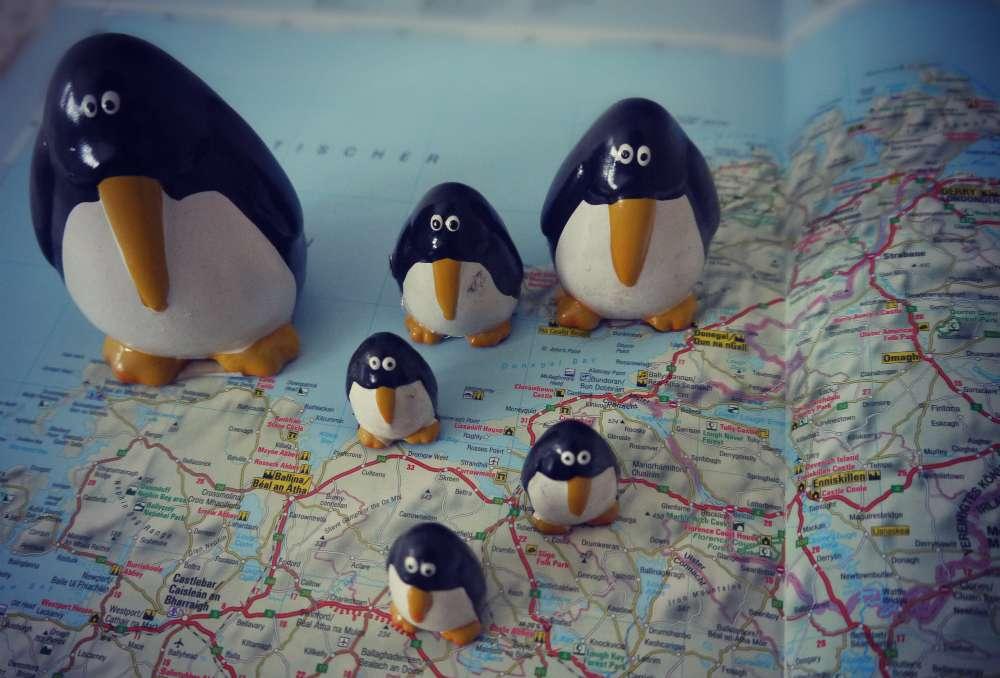 8 Gründe, warum mein Herz für Gruppenreisen schlägt
