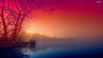 Beautiful Fog wallpaper | 2560x1440 | #29325