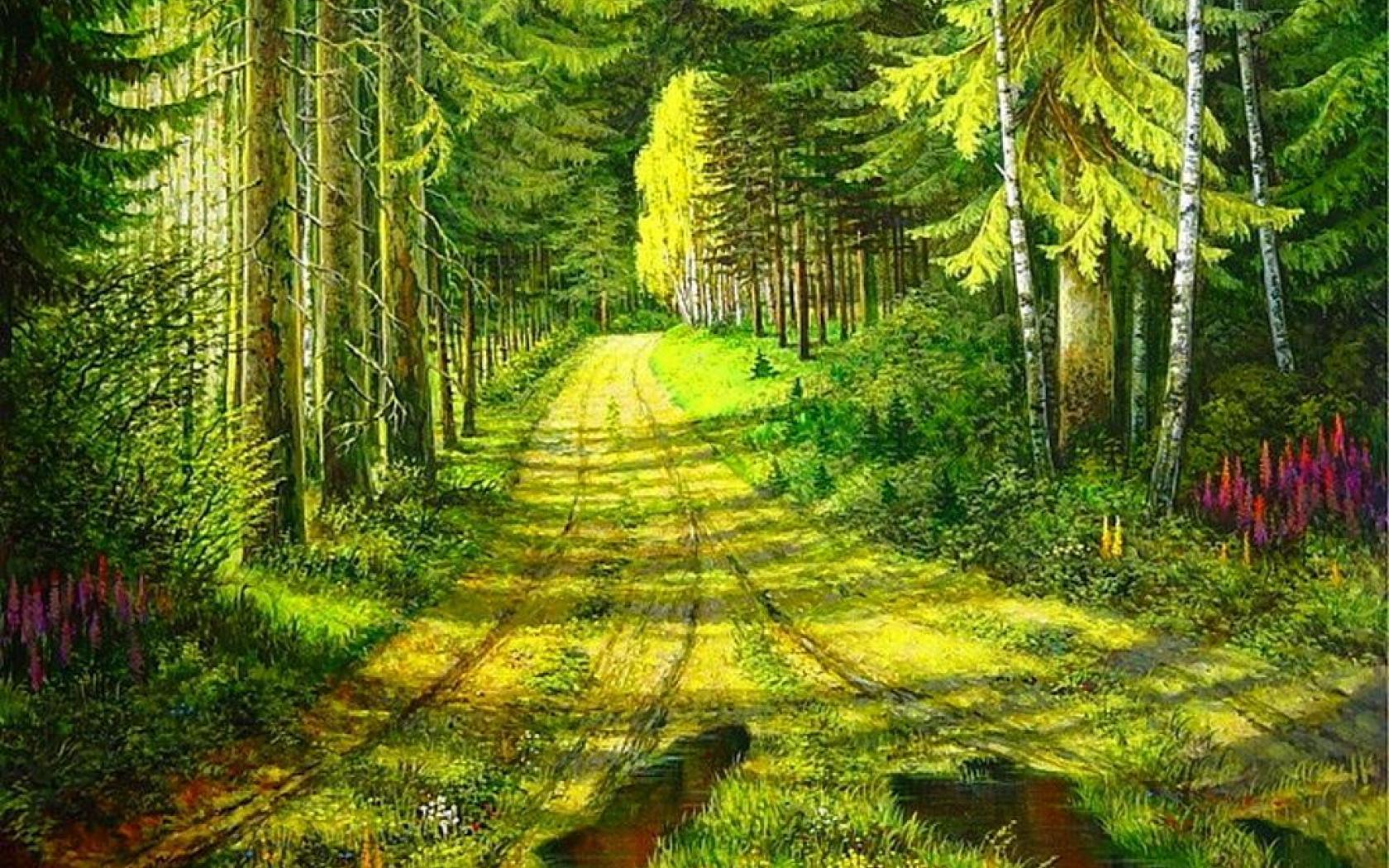 Wallpaper Fall Beautiful Forest Path Wallpaper 1680x1050 29328