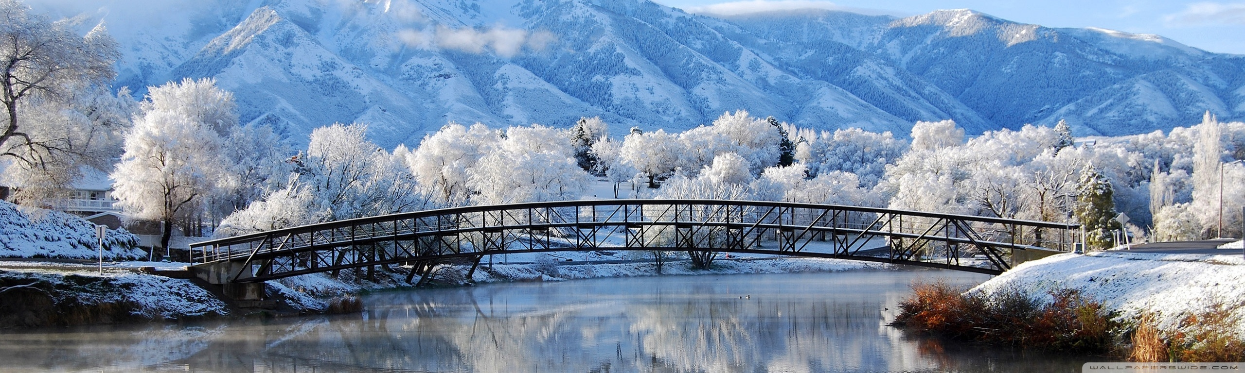 Falling Snow Wallpaper Widescreen Beautiful Winter Wallpaper 2560x768 7909