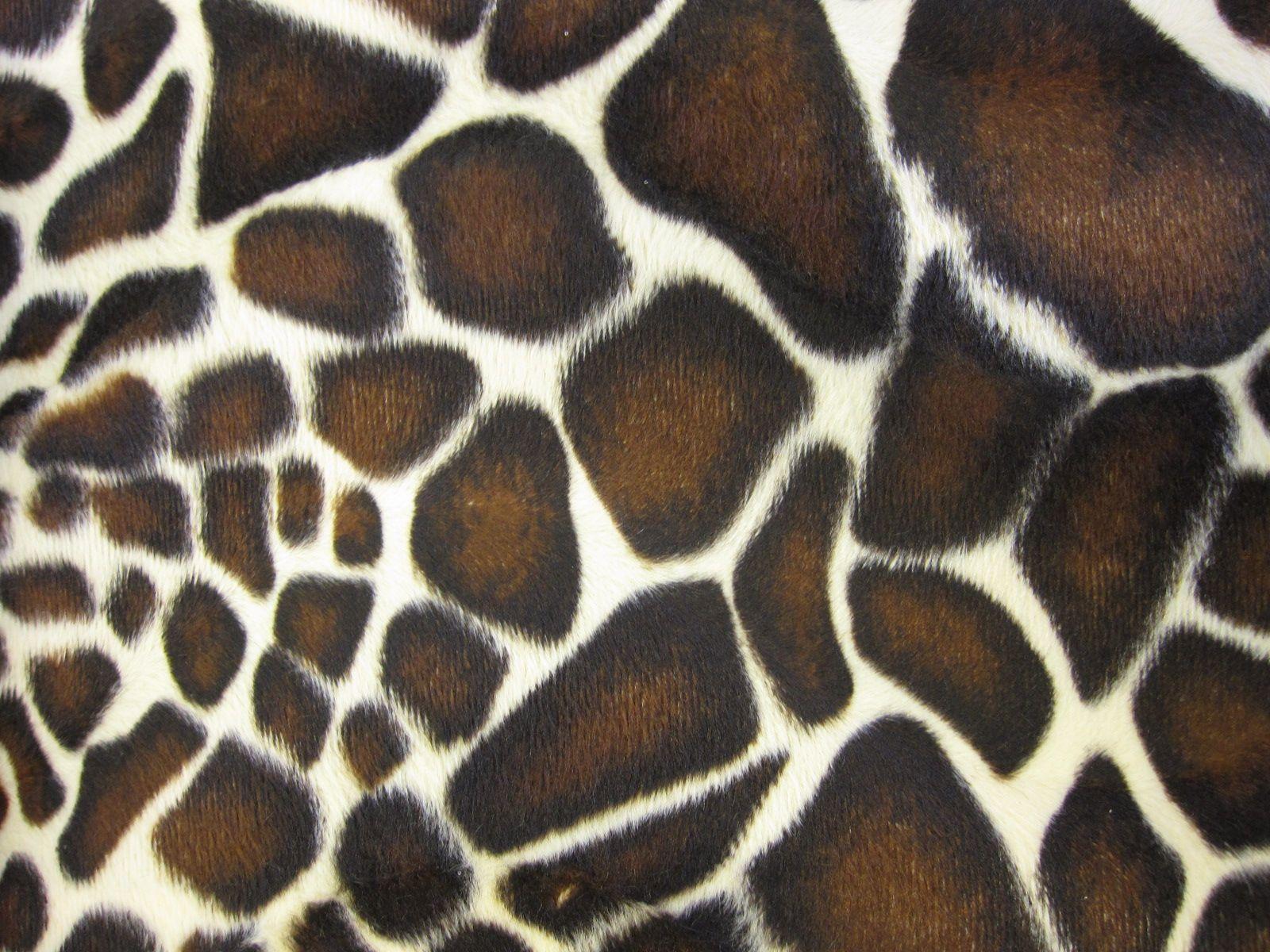 Leopard Animal Print Wallpaper Giraffe Pattern Wallpaper 1600x1200 58514