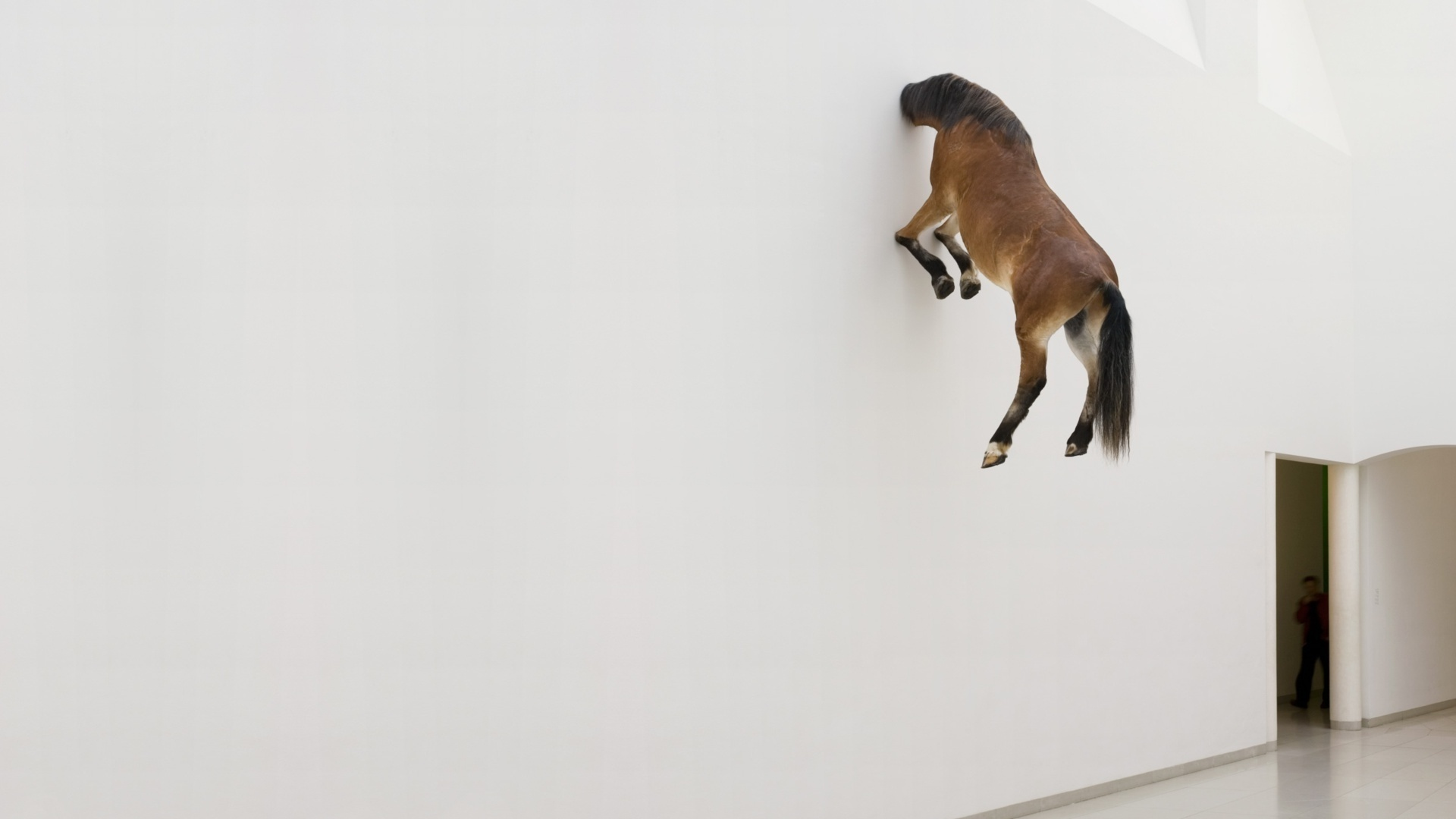 Japan Fall Colors Wallpaper Horse In Wall Wallpaper 1920x1080 25148