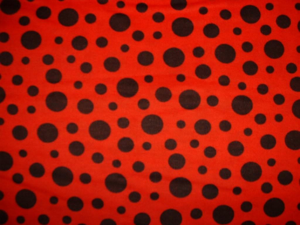 Cute Animals Hd Wallpapers Free Download Ladybug Spots Wallpaper 1024x768 13593