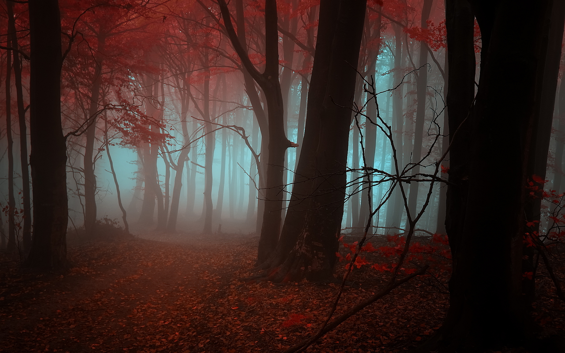 Mystical Creatures In The Fall Wallpaper Mountain Peaks Pictures Wallpaper 1600x1200 31045