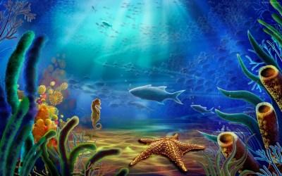 Underwater wallpaper | 1680x1050 | #39671