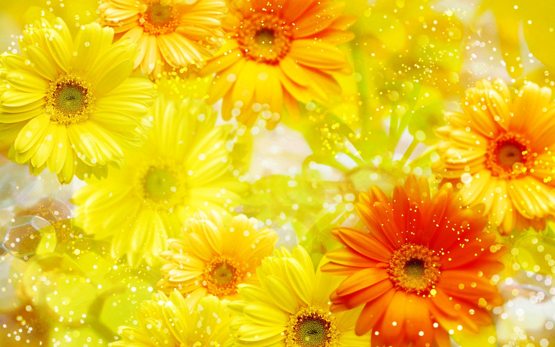 Cool Wallpapers For Phones 3d Yellow Flowers Background Wallpaper 1920x1200 23762