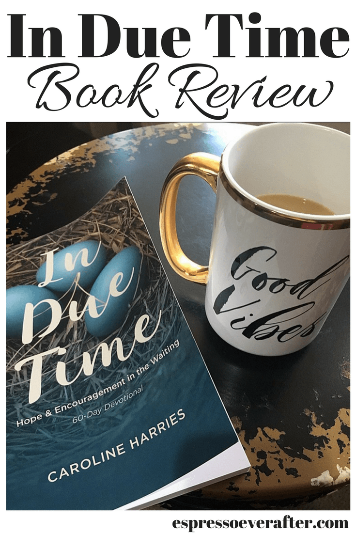 In Due Time Devotional - Book Review