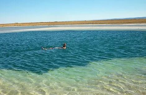 Laguna Cejar e Ojos do Salar: Flutuando no Deserto do Atacama