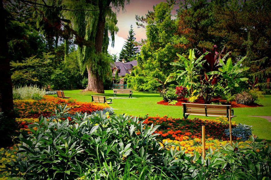 Natal Wallpaper 3d 40 Jardines Y Parques M 225 S Bellos Del Mundo Plantas