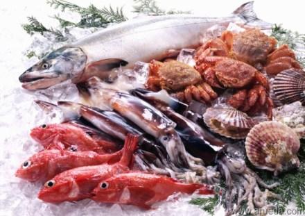 Los-10-pescados-y-mariscos-más-saludables-para-tu-nutrición-y-salud