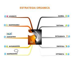 140104_ESTRATEGIA ORGANICA