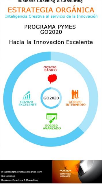Programa PYMES GO2020 de ESTRATEGIA ORGÁNICA: Hacia la Innovación Excelente