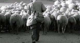 ministerio_pastoral